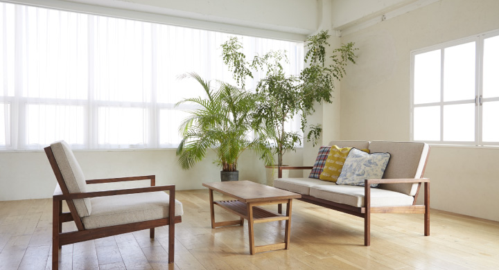 くつろぐ空間、リビングにおすすめの観葉植物5選
