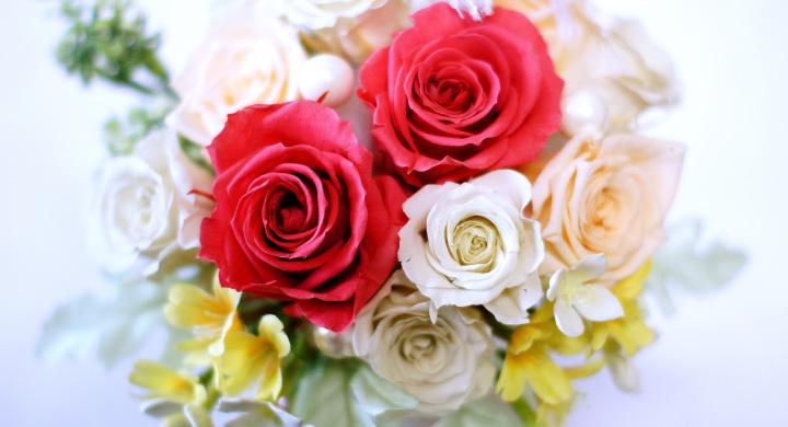 プリザーブドフラワーに人気の花材5選
