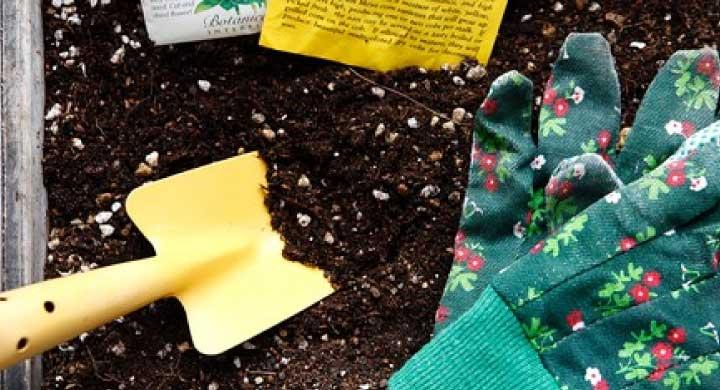 マンションなどでのベランダガーデニング「土の処理方法」