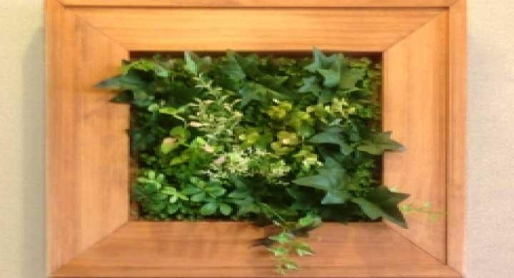 インテリアで部屋をおしゃれに!壁掛け観葉植物5選